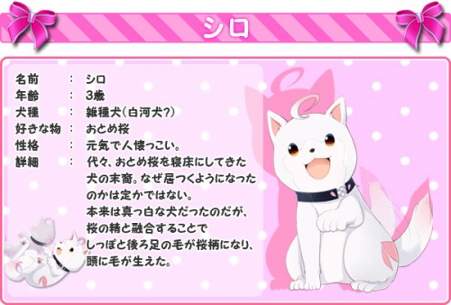 char_shiro